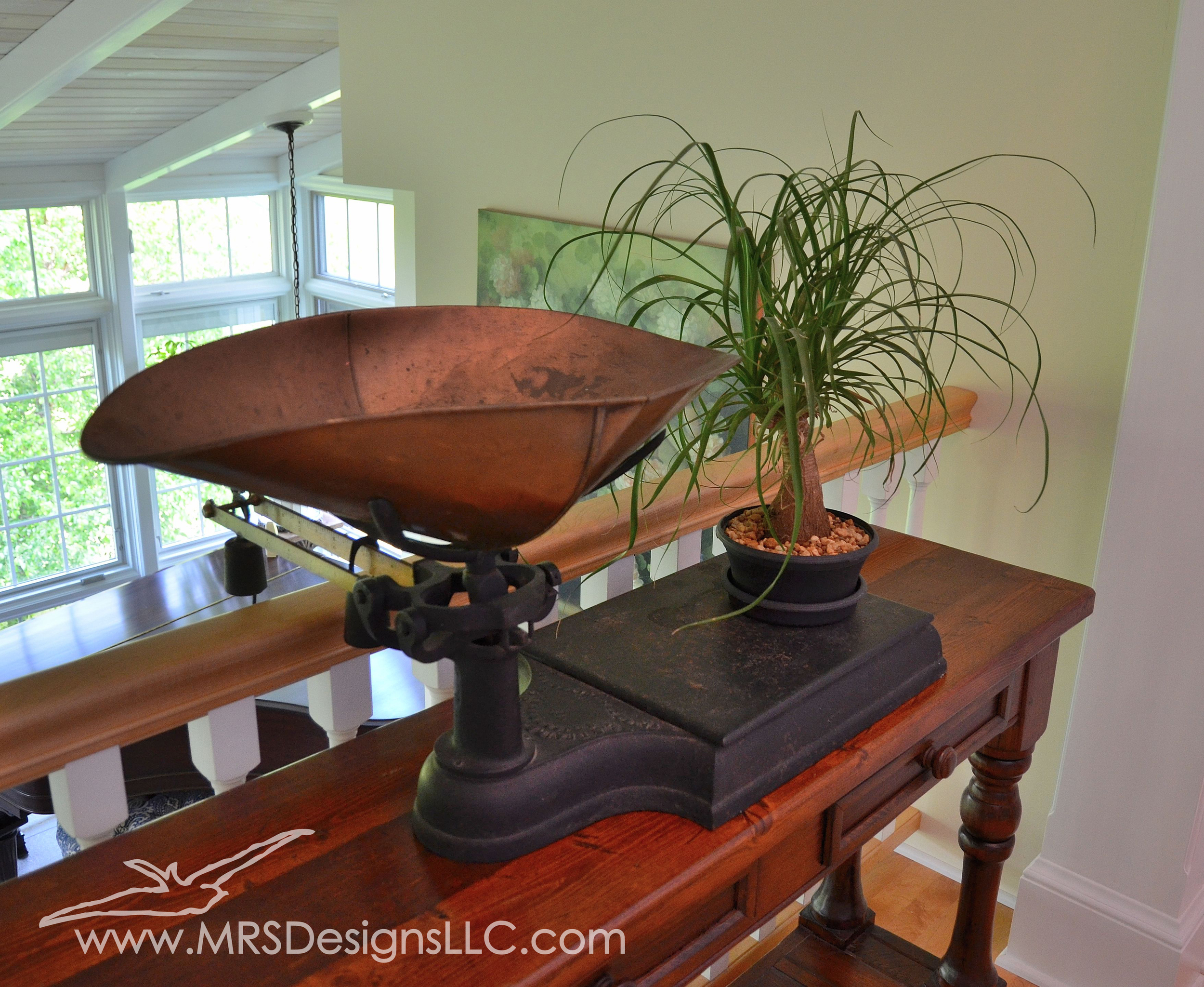 MRS Designs Blog - Using Vintage Scales to Decorate Your Home. Why not use a plant?