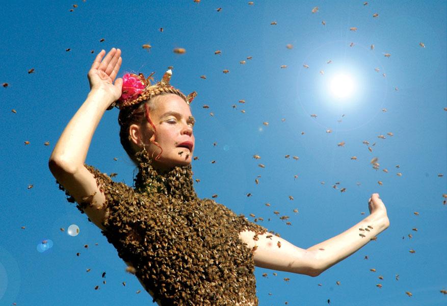 queen_of_the_sun.jpg