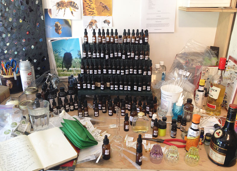 My perfumer's organ within my studio.  Kelly Heaton, July 2014