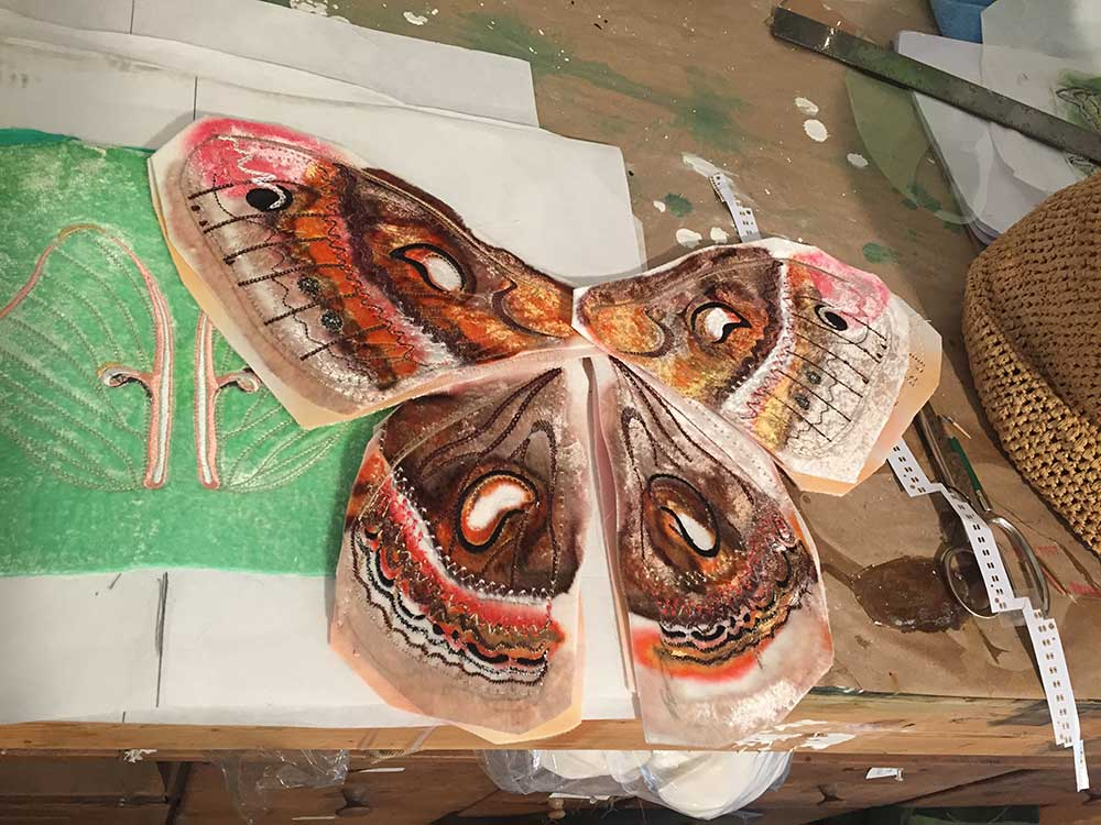 Dyed and embroidered velvet Cecropia moth wings (over a Luna) for a work in progress. 2018