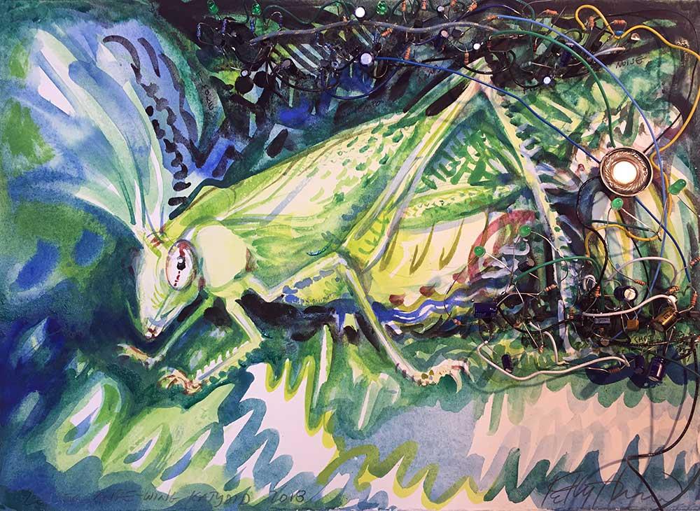 lesser-angle-winged-katydid.jpg