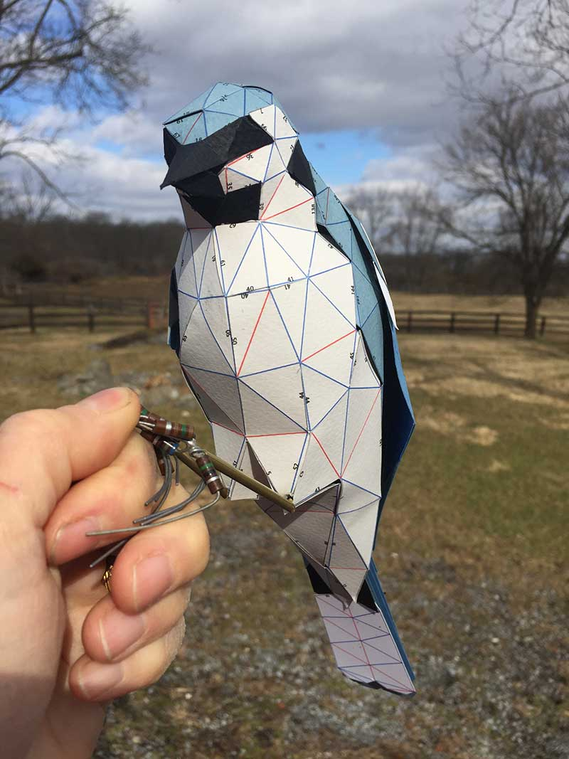 Kelly Heaton bluejay sculpture