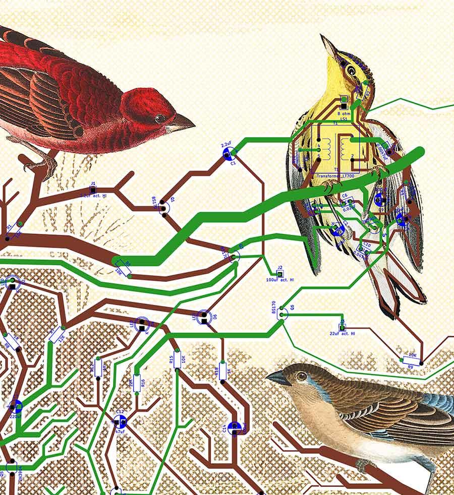 KHeaton_det_bird-circuit.jpg
