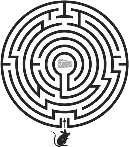 2_Mouse-Maze.png