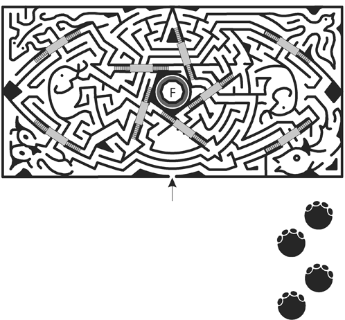 15_Double-Elephant-Maze.png