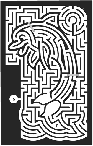 36_Dolphin-Maze.png