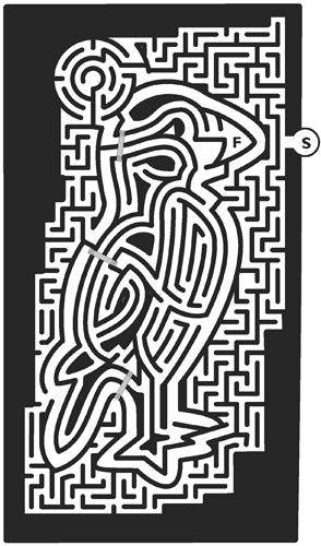 39_Puffin-Maze.png