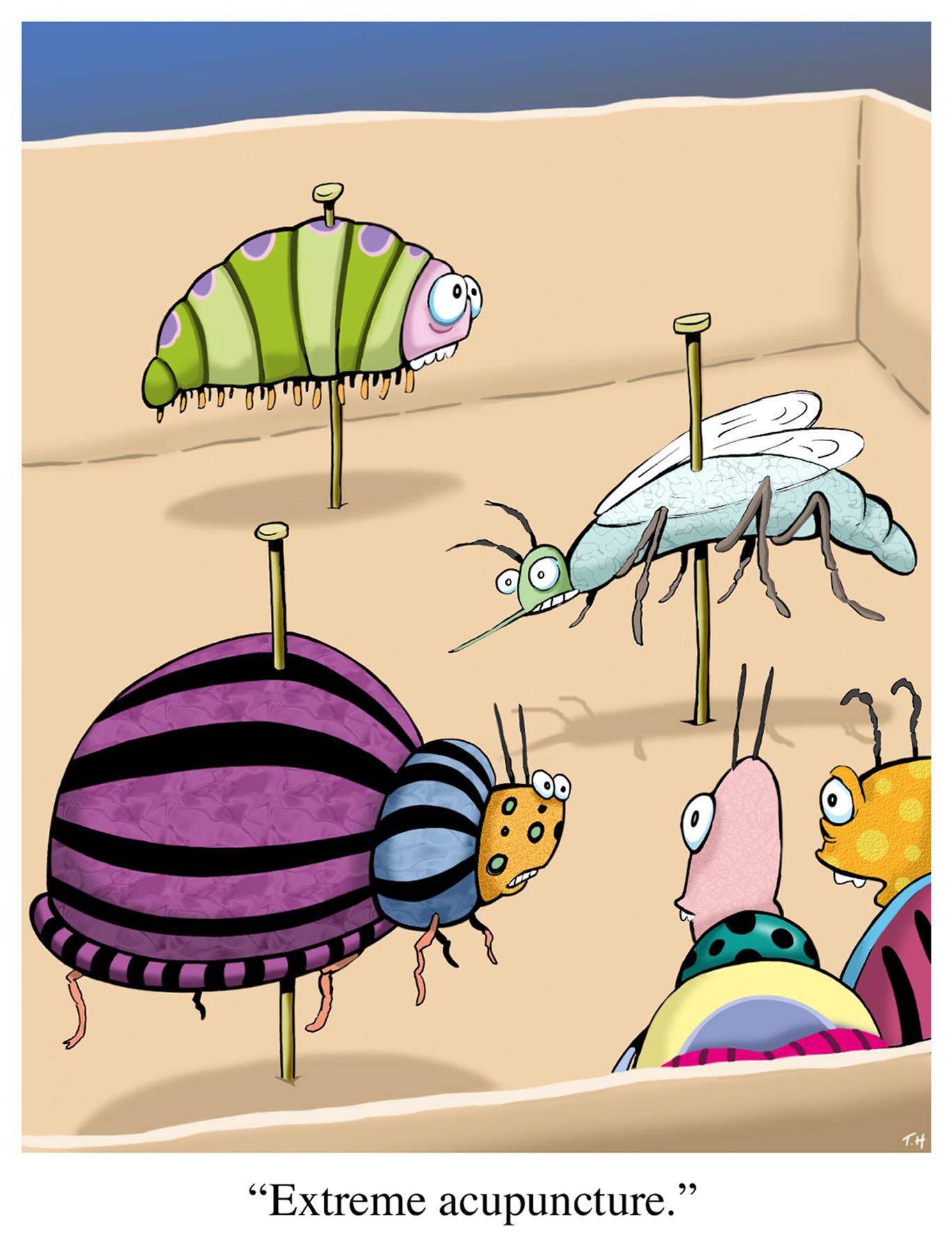 bug_acupuncture.jpg