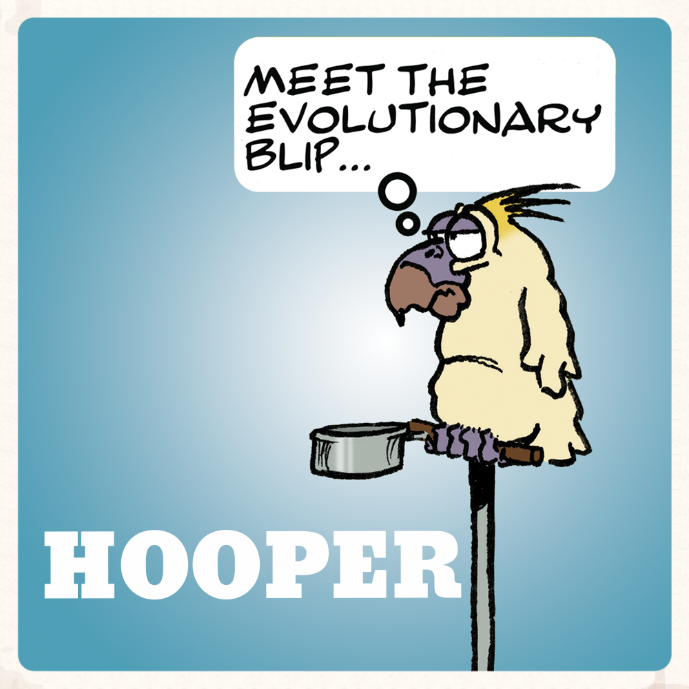 hooper_0010-copy-b.png