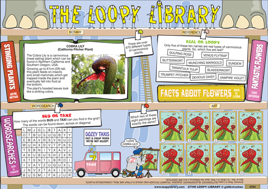 H704-Loopy-Library-Cobra-lily.png
