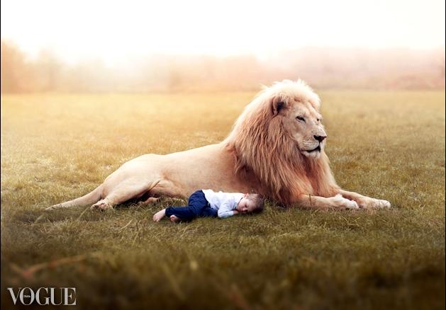 """VOGUE Italia-  Title: """"Landon's Lion"""""""
