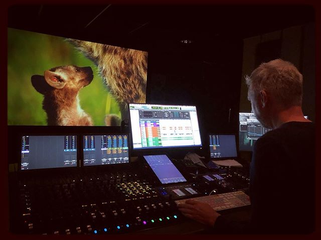 Very excited to finish the first of our sound mixes today - great team effort between location sound recordists, dubbing editors, dubbing mixer and composer. Pictures not bad either... Look out for #AnimalBabies First Year On Earth on @bbctwo later in the year.  @bbcearth @jamhem @johnny_aka_thor  @markmcc01 @smgibbo @vianet_djenguet @vianetdjenguet @bobpoolefilms @soundellie @_ellis_roberts_ @cocozinha @lownfish  #naturalhistory #wildlifephotography #wildlife #babyanimals #sound #audio #postproduction