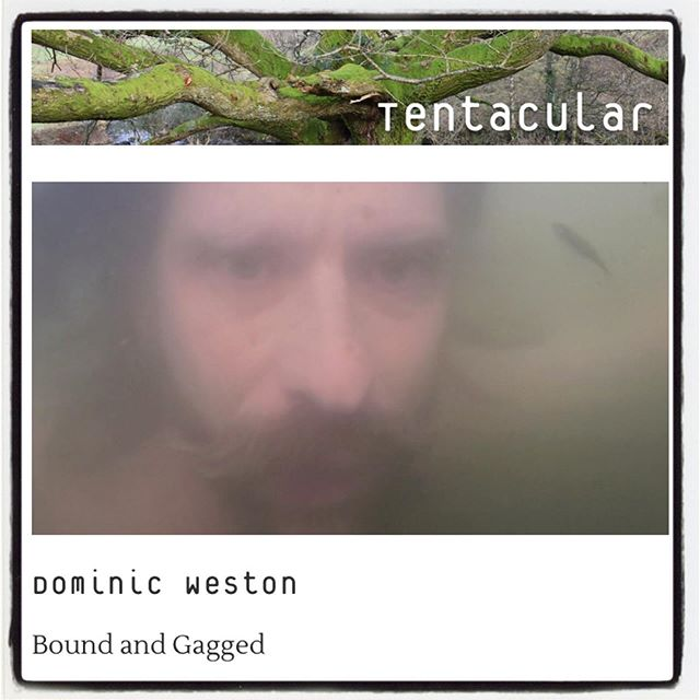 Thrilled to be featured in the summer issue of Tentacular - Tentacular is an online poetry, responses and arts magazine, issued quarterly www.tentacularmag.com  #poetry #poetryfilm #poems #videopoetry #wildswimming #wildswimminguk #visualart