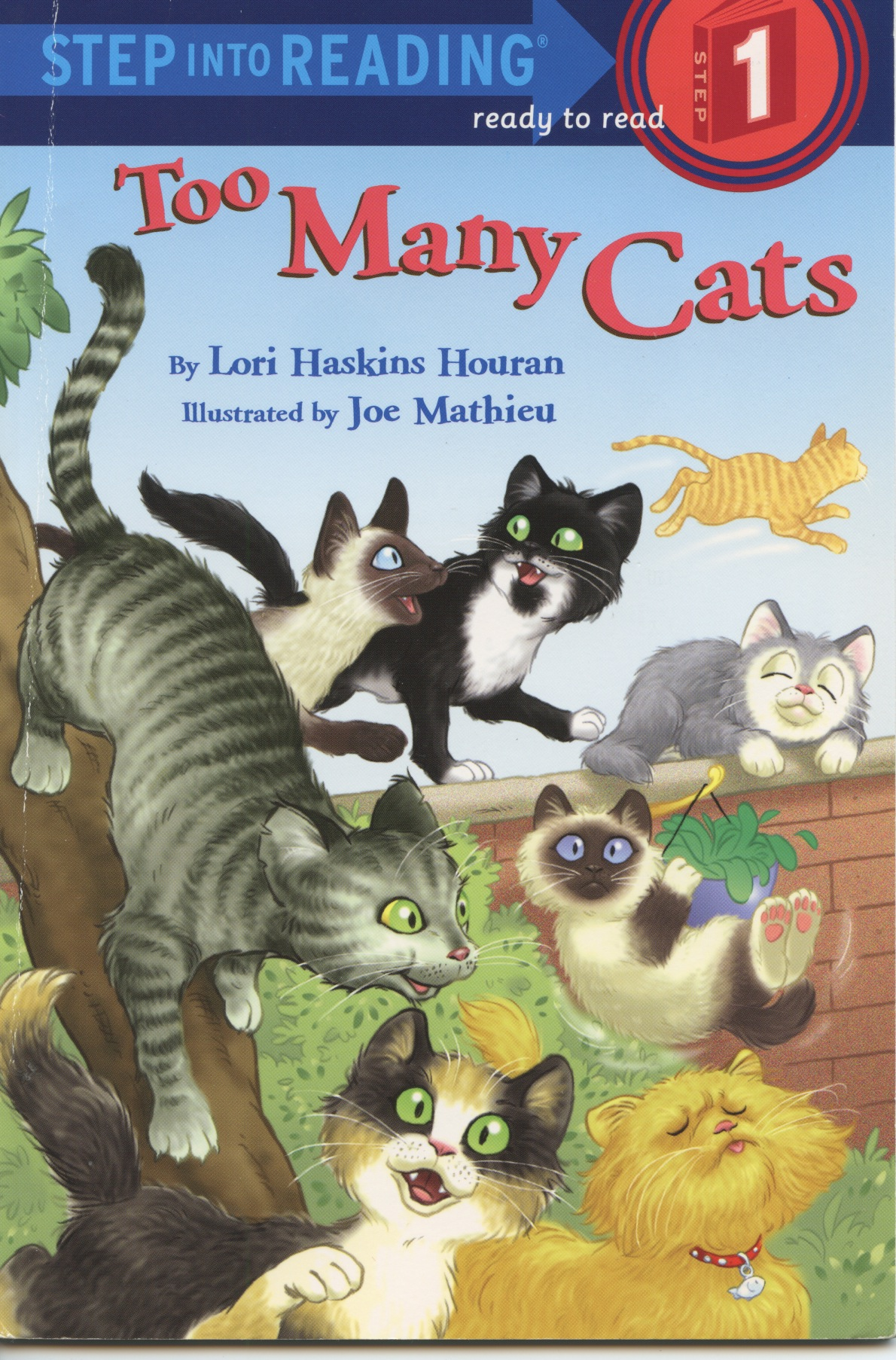 Cats 2 cover.jpeg