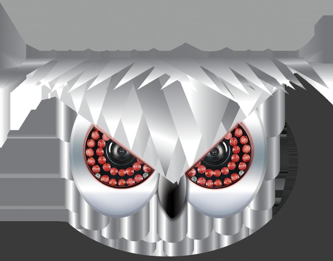 night_owl_logo7.16.png