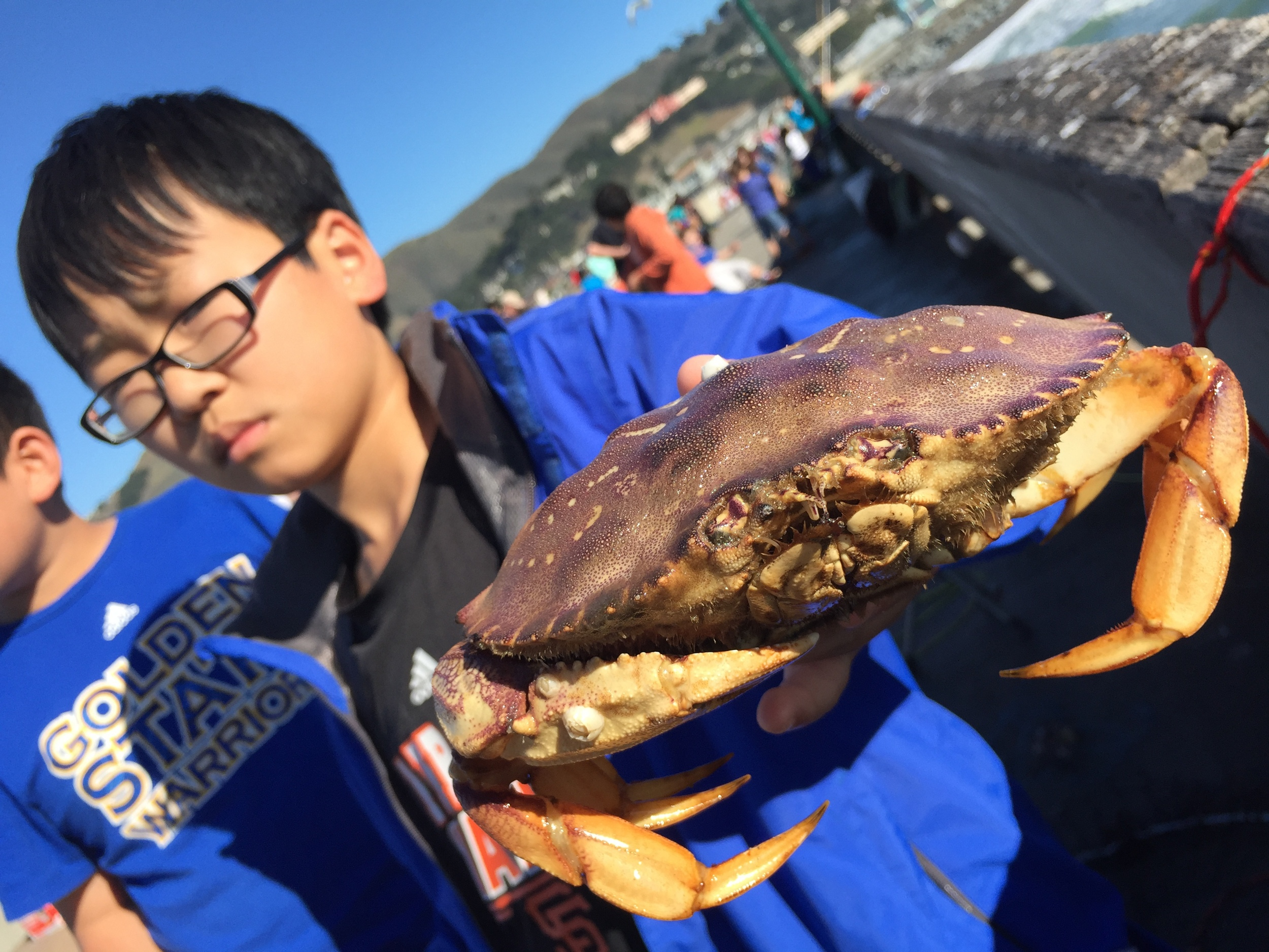 We'll come back for you next year, crab--to give you another uncomfortable close-up.