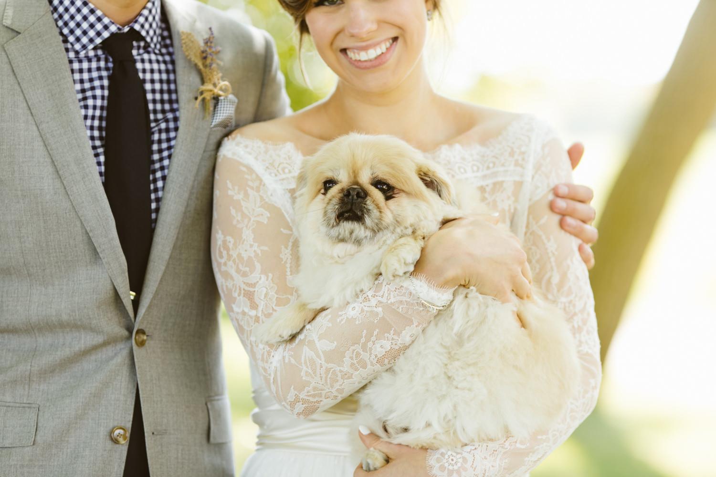 Bride-groom-puppy-dog
