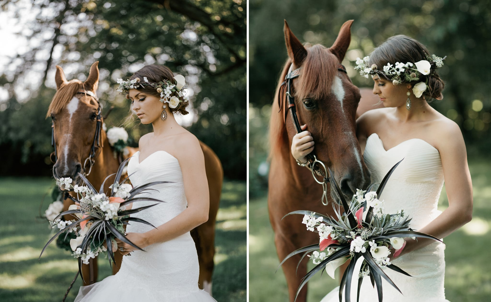 Horse-bride-wedding-photography