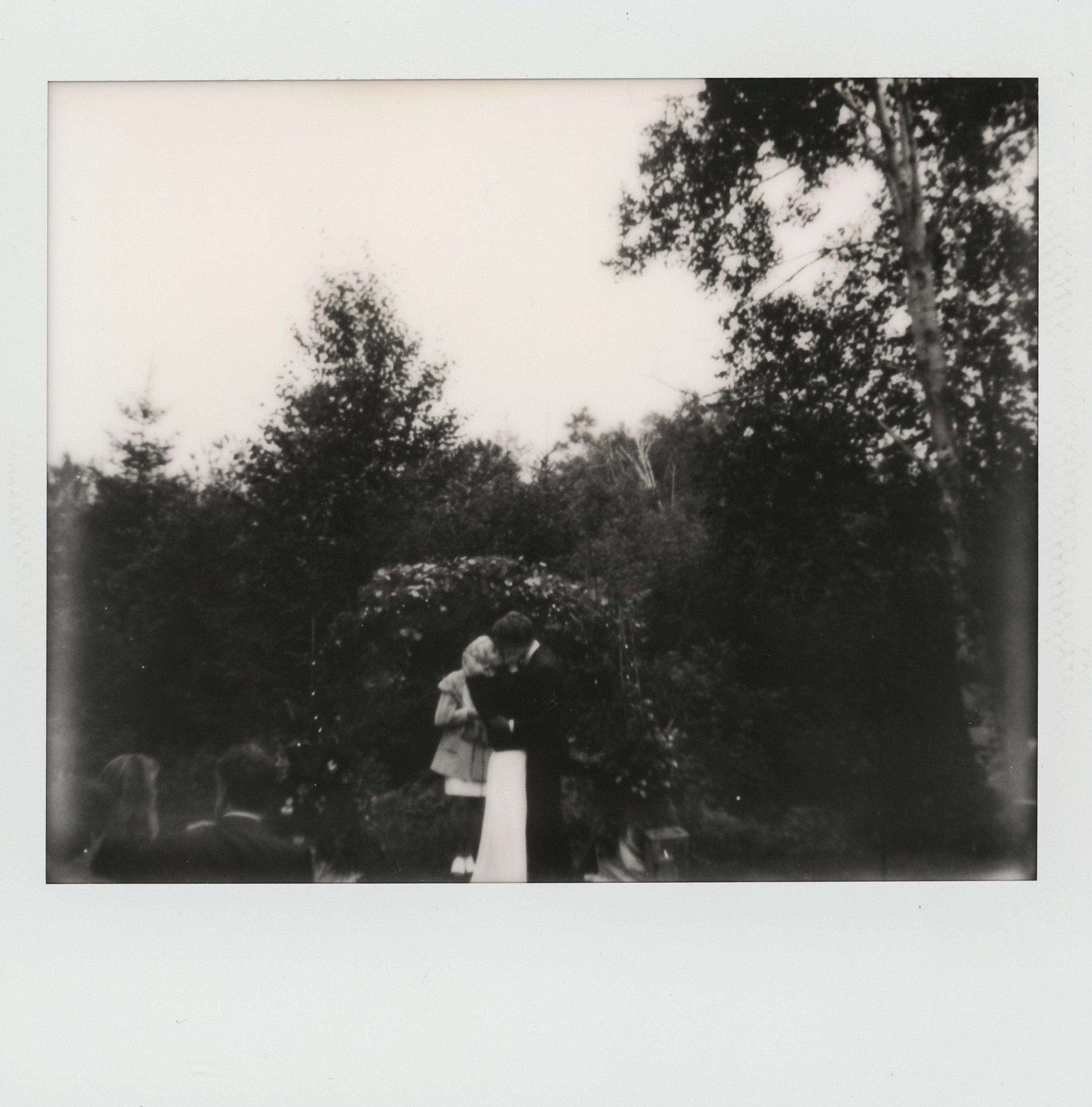 Gooseberry-falls-wedding024.JPG