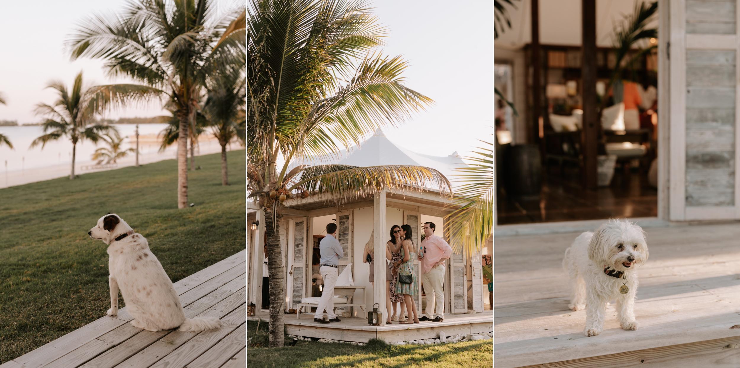 Harbour-Island-Ocean-View-Club-Wedding-Photographer_12.jpg