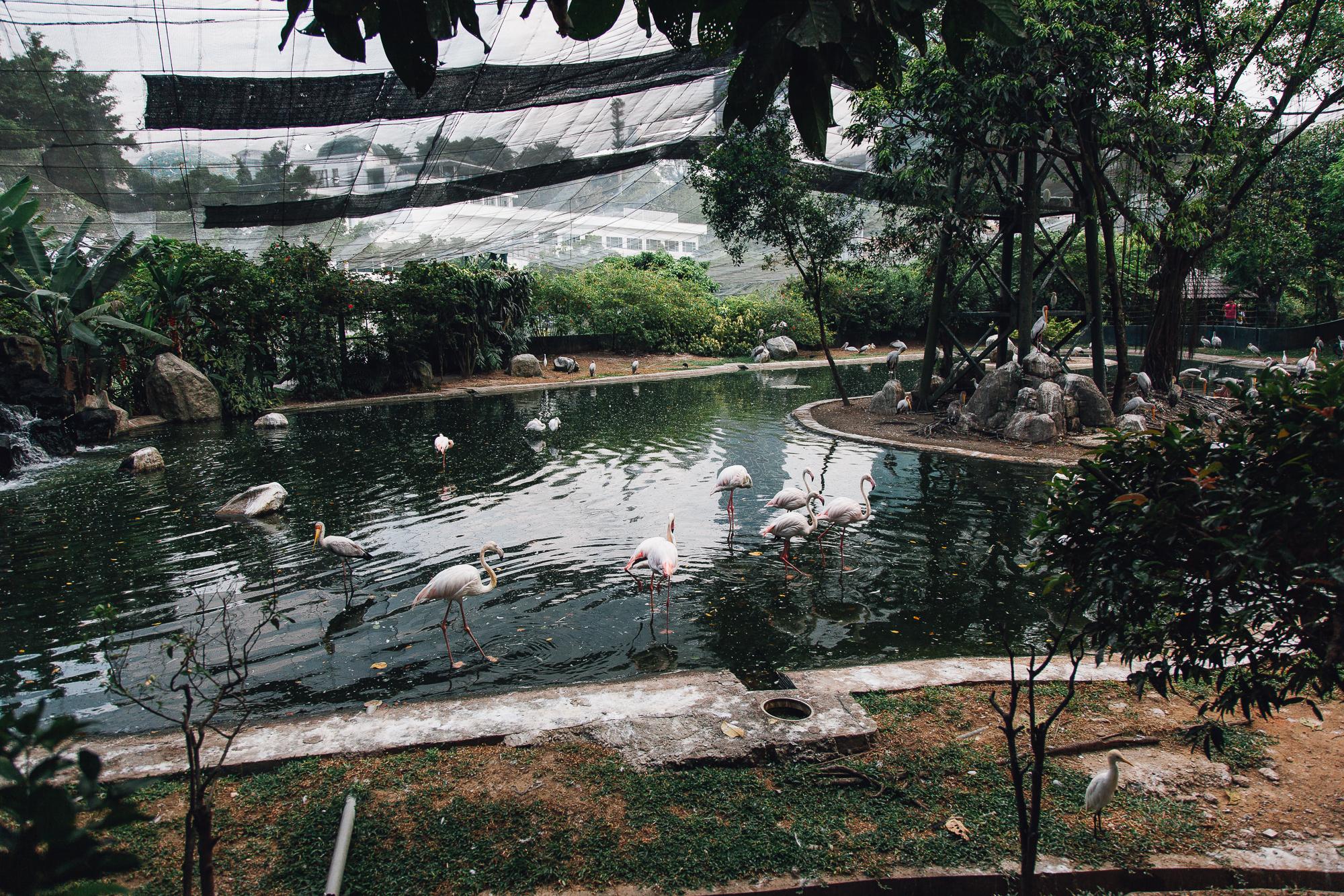 MALAYSIA070.jpg