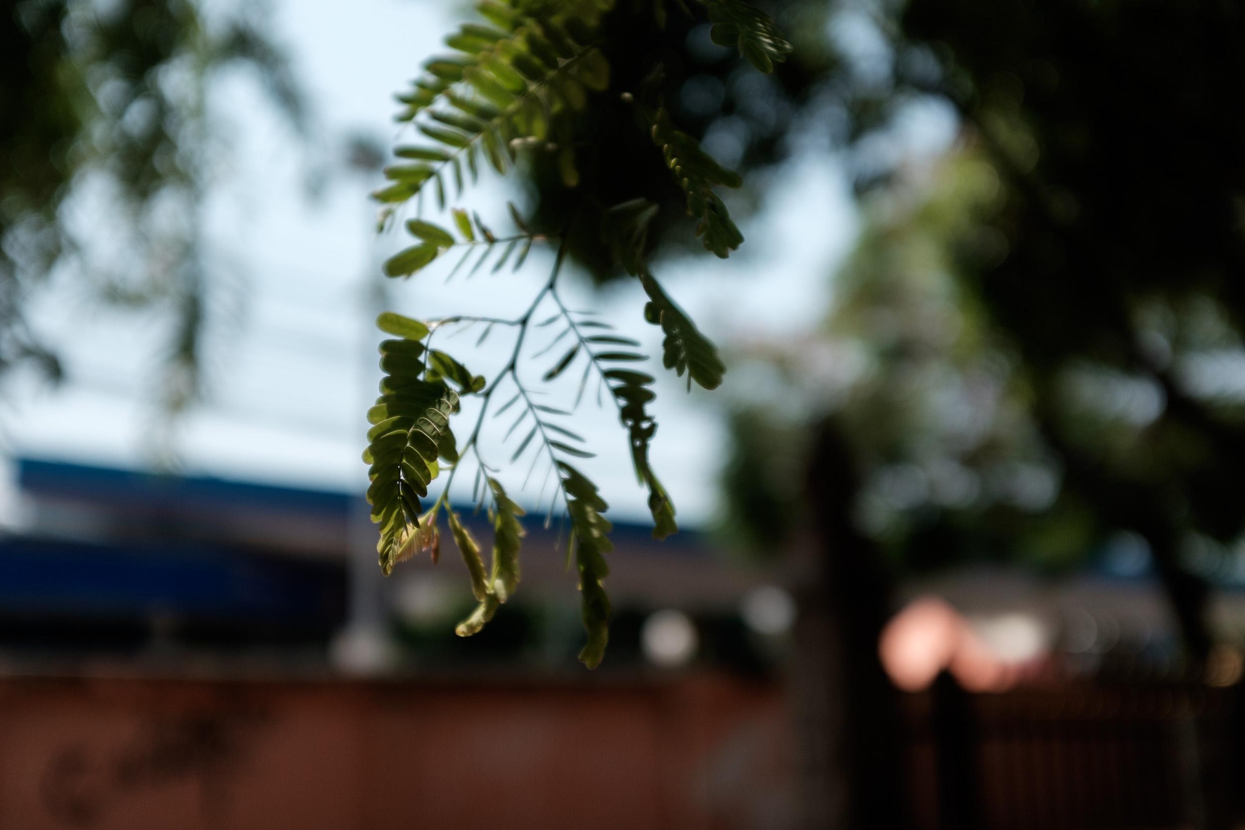 CHIANGMAI_76.jpg
