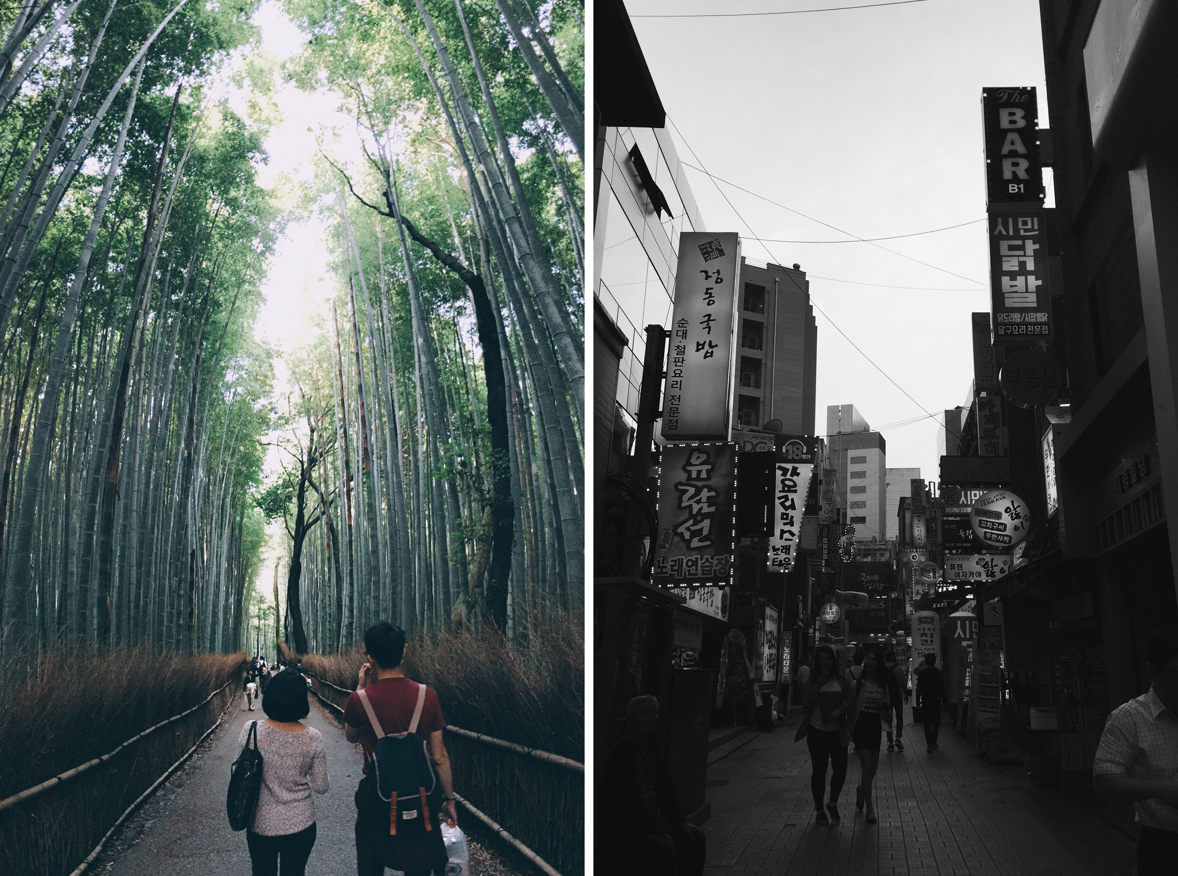 Arashiyama Bamboo Forest, Kyoto, Japan // Seoul, South Korea