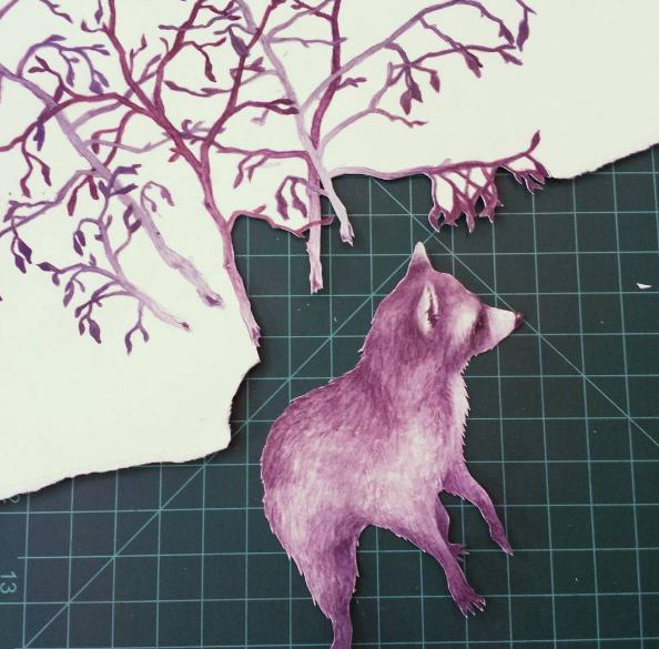 raccoon process