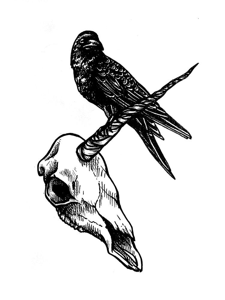 Crow Lineart 2