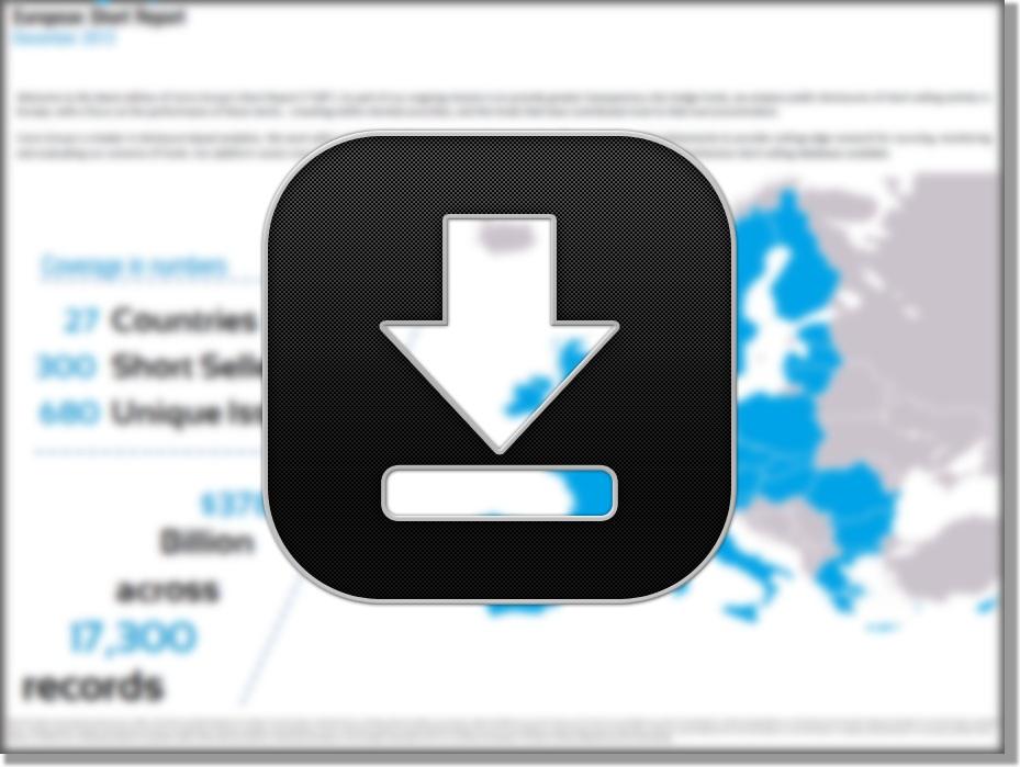 European Short Report - November 2013