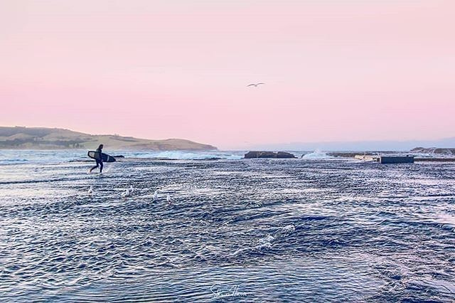 ⁣⠀ Gerringong⁣ skies 💕⁣ a dreamy start to the week 📷 @shereeharrisphotos ⁣⠀ ⁣⠀ ⁣⠀ ⁣⠀ #gerringong #werribeach #ilovekiama #southcoastnsw #surfers #pastelskies #prettypastels #pink #oceanfarm #southcoastholidays #southcoastgetaway #southcoastnsw #nswcoast #southcoaststyle⁣⠀ ⁣⠀
