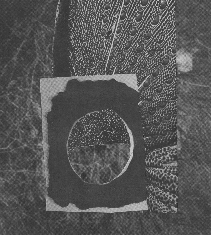 Moon32.jpg