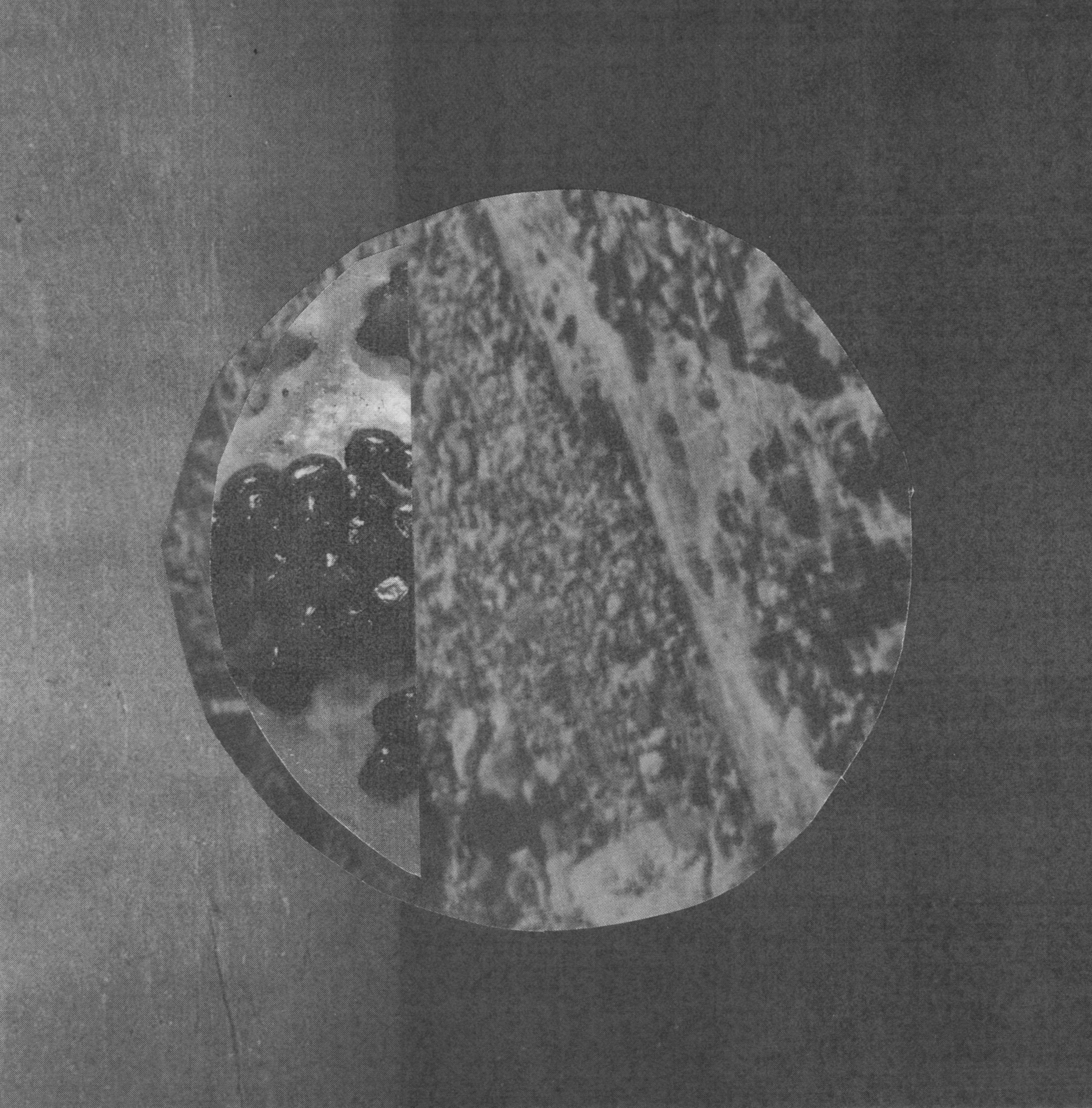 Moon82.jpg