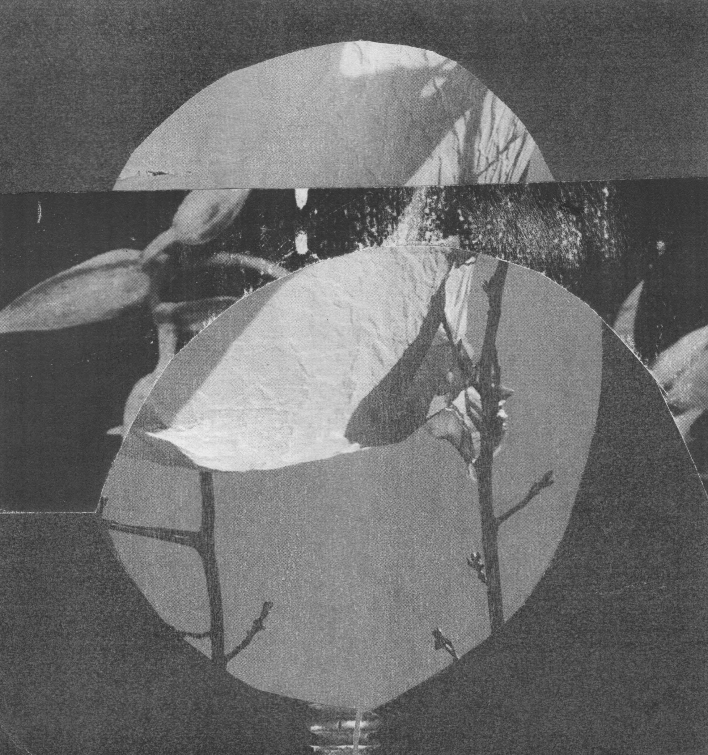 Moon120.jpg