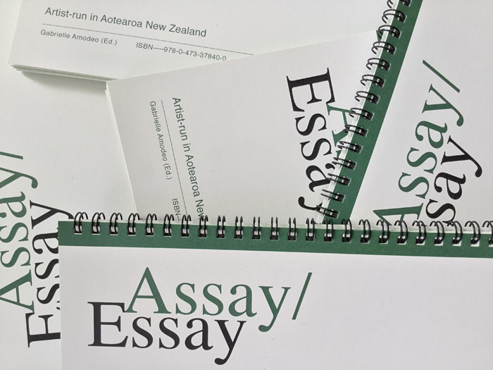 gabrielle-amodeo-enjoy-gallery-assay-essay-artist-run-aotearoa