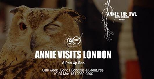 annie-the-owl-londres.jpg