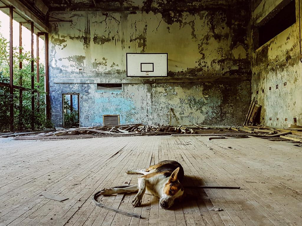 chernobyl-basketball.jpg