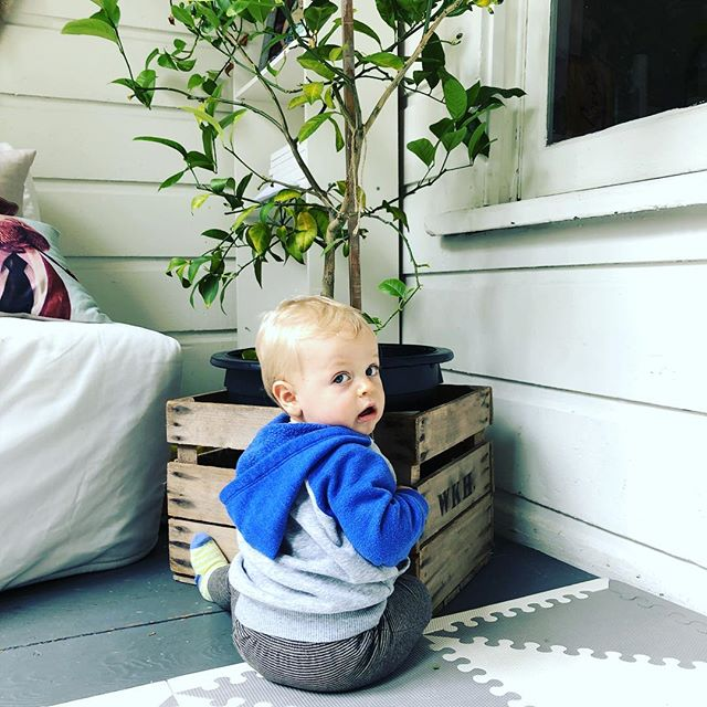 Now that we have visited that toilet bowl, let's see what's in this pot... 🤭🙈 #hendrixrasmusjohan • • • • • #wellmama #mom #mama #newmom #healthymom #momlife #motherhood #dailymotherhood #motherhoodunplugged #motherhoodinspired #bringingbackthevillage #momblogger #healthcoach #lifecoach #healthyfamily #holisticmom #motherhoodrising #kids #babies #parenthood #childhoodunplugged #magicofchildhood #letthembelittle #bestofmom #raisinghumans #livethelittlethings #instakids #womenempowerment #workathomemom