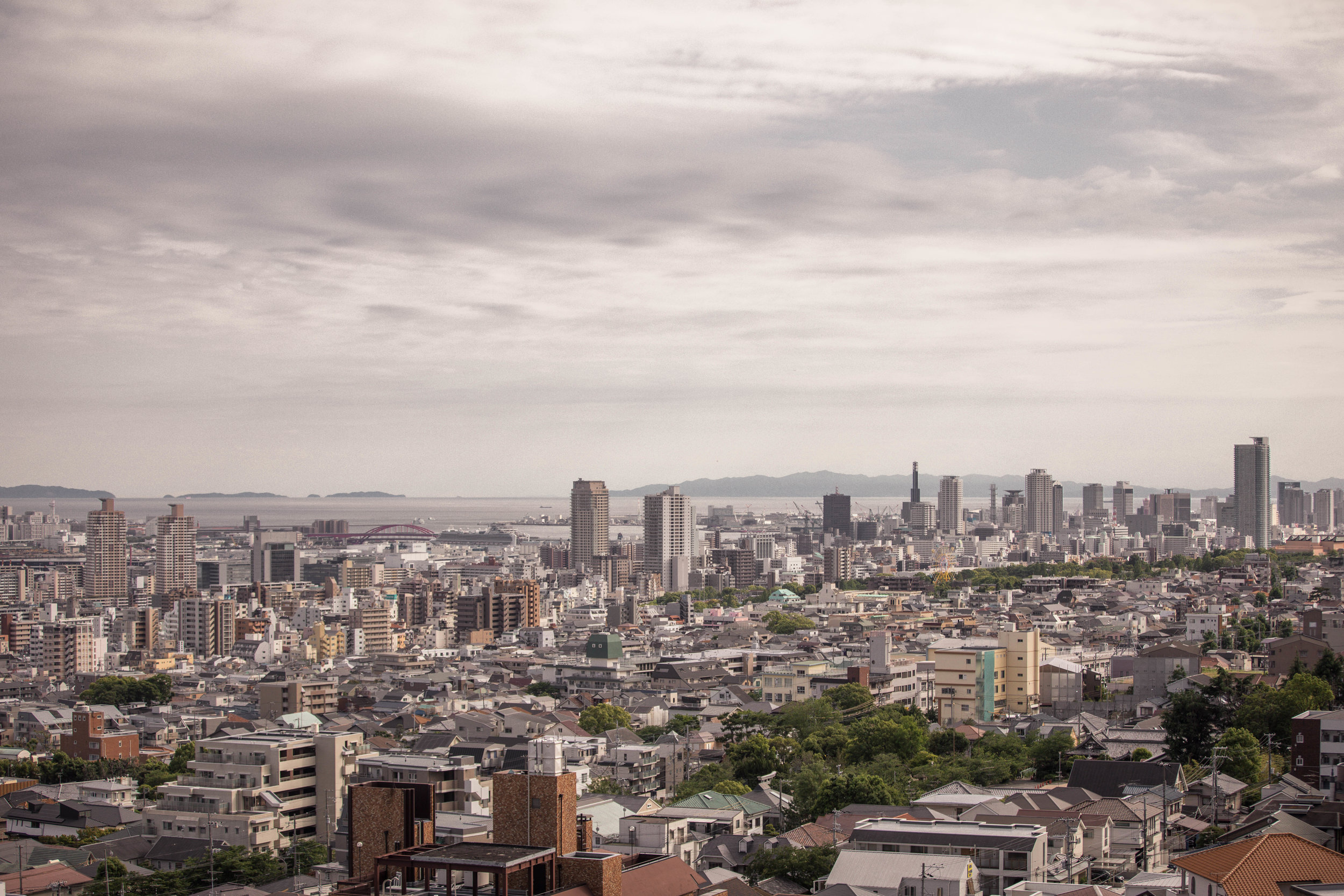 A view of Kobe, overlooking Oji park, with Sannomiya and Motomachi beyond it