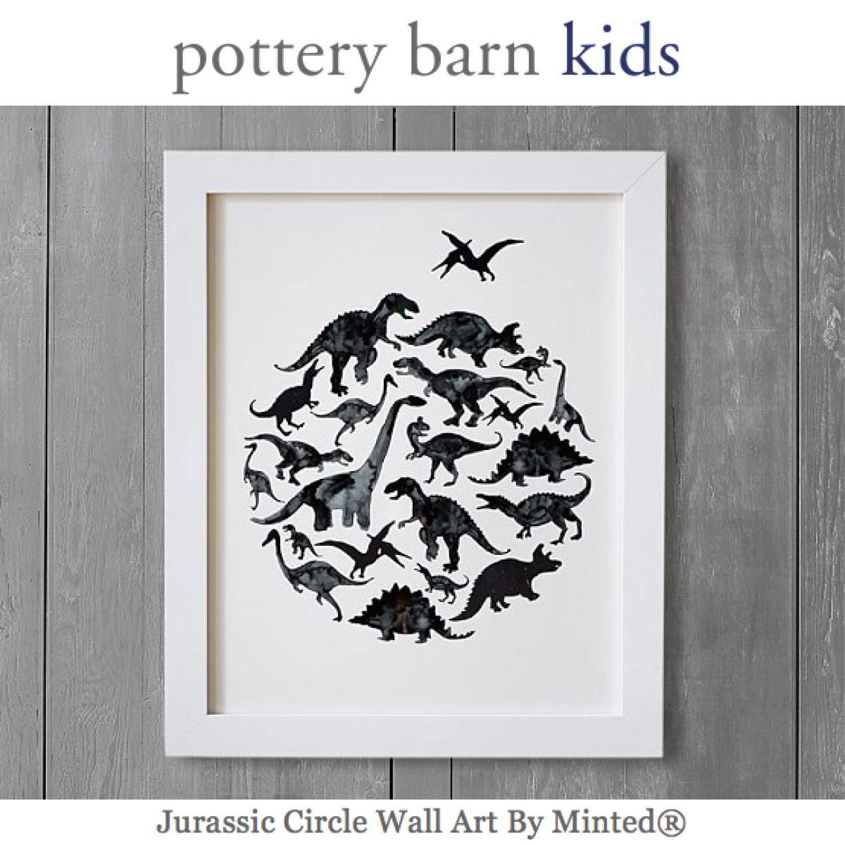 http://www.potterybarnkids.com/products/jurassic-circle-minted-art/?pkey=cminted-collection&&cminted-collection