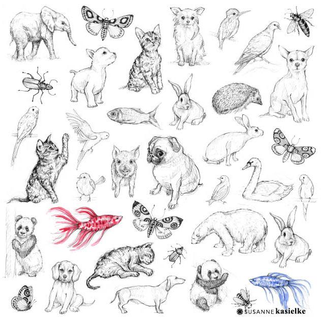 portfolio-ipad-21x16cm-01-illustration0375.jpg