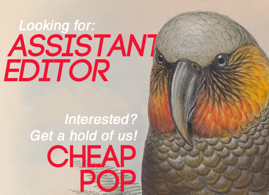 Looking for editor_edited-1.jpg