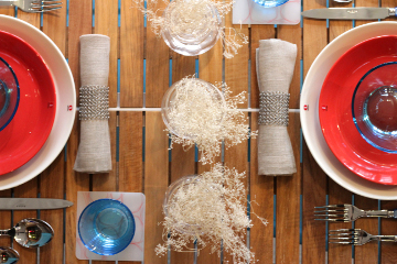 Overhead view of Independence Day table setting