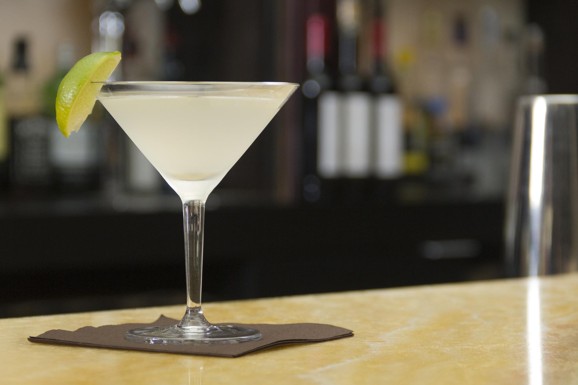Schott Zwiesel Basic Bar Martini Glass with Gimlet