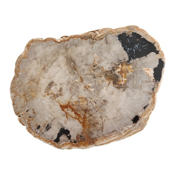Petrified Wood Platter - This is the gift of the season! The marbleized wood patterns form beautiful unique boards, great for serving charcuterie or to use as a centerpiece. Ranging from $50-$350, this gift can be paired with a cheese knife or be the star of the show.