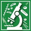 Asbestos, Lead & Hazardous Materials Surveys