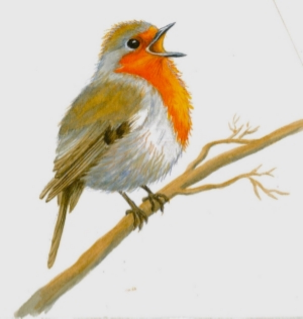 Joyful Christmas Robin