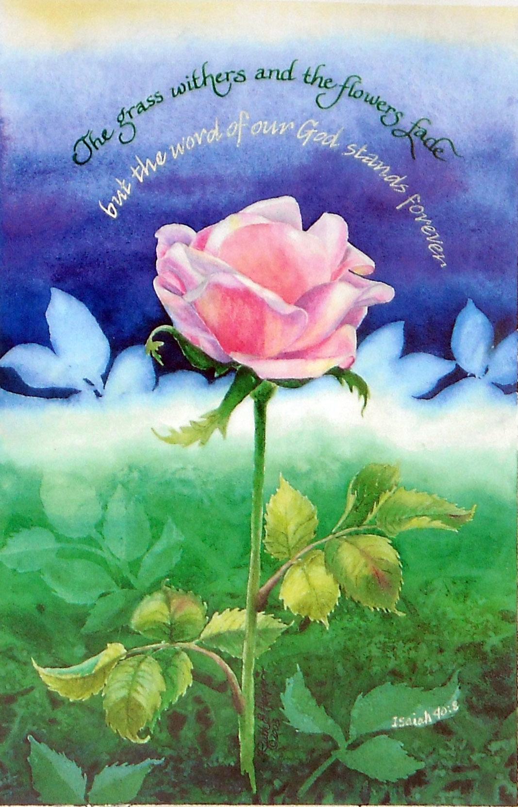 Deb's Rose - web.jpg
