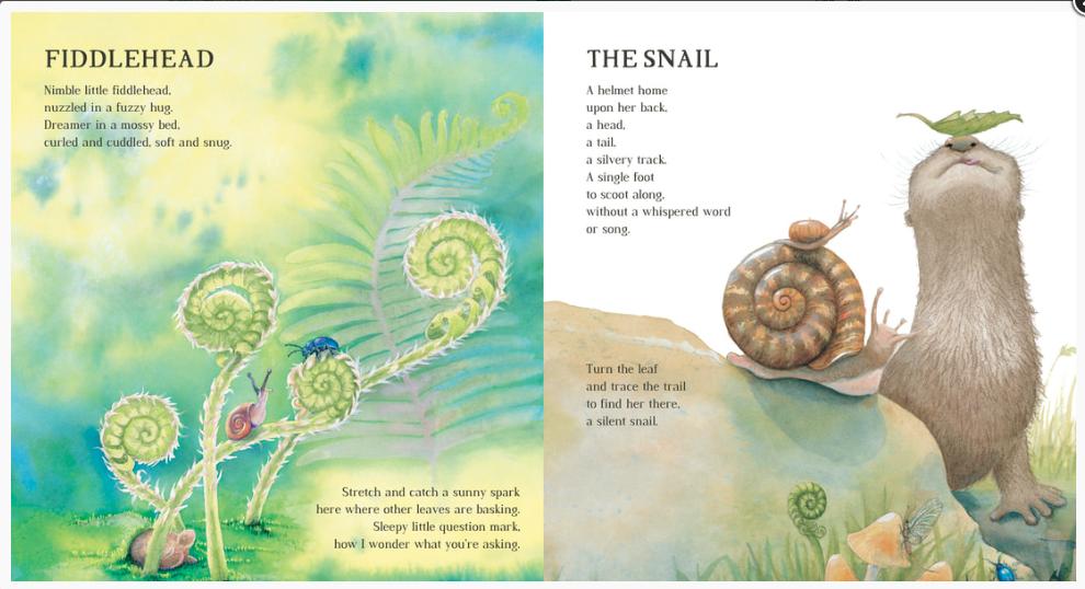 OSTT - Fiddlehead, Snail.png