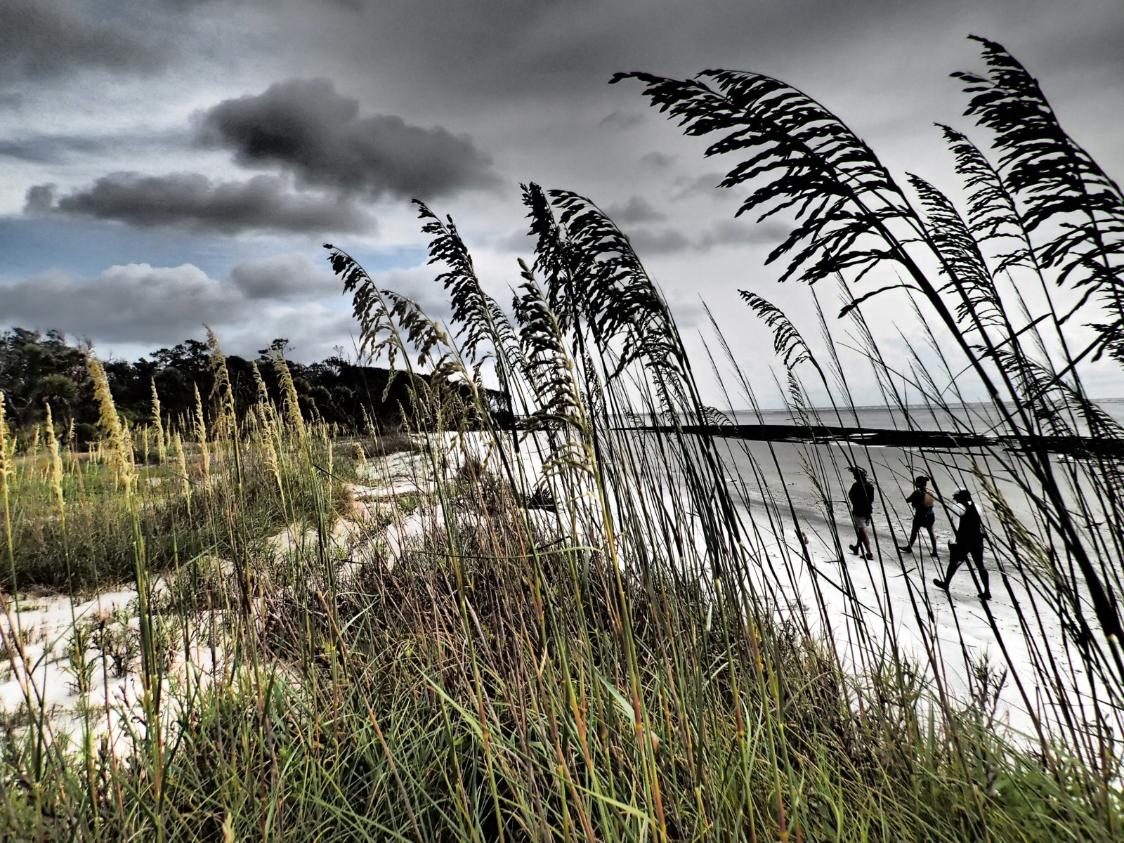 Georgia Beach.JPG